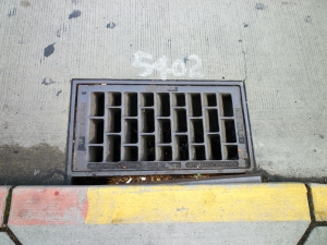 The sewer that ate my phone.
